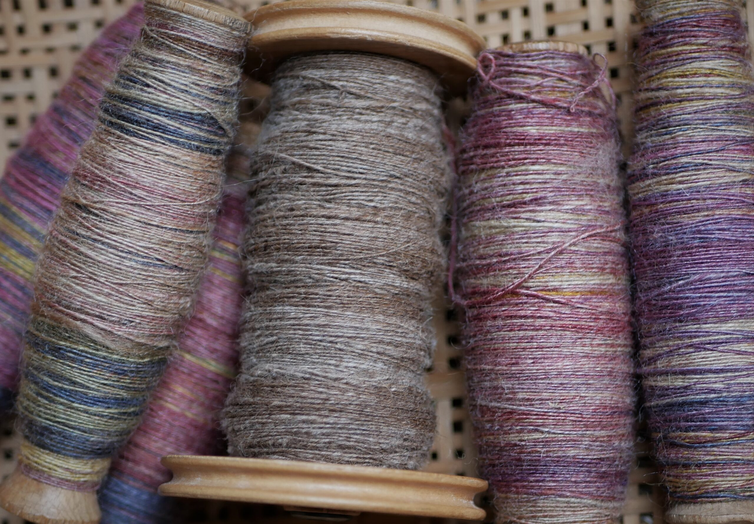 Sheep to Sweater Sunday n° 189 : Getting Ready to Ply