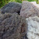 …more fleeces…